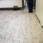 LVT Flooring Queens Gallery